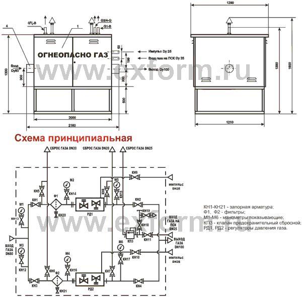 """"""",""""www.exform.ru"""